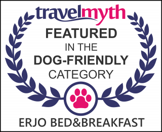 dog friendly hotels in Holsted