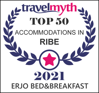 hotels in Ribe