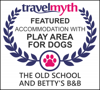 hotels with play area for dogs in Holmrook