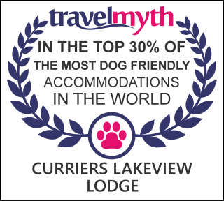 best dog friendly hotels in Rice Lake