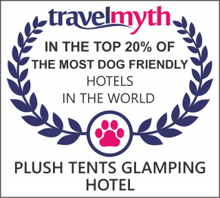 best dog friendly hotels in Chichester