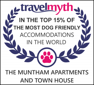 best dog friendly hotels in Torquay