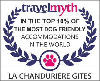 dog friendly hotels in Saint-Paul-en-Gatine