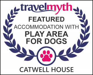 hotels with play area for dogs in Williton