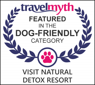 dog friendly hotels in Lamai Beach
