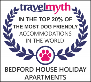 dog friendly hotels in Torquay