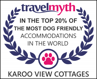 best dog friendly hotels in Prince Albert