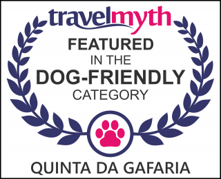 Santarem dog friendly hotels