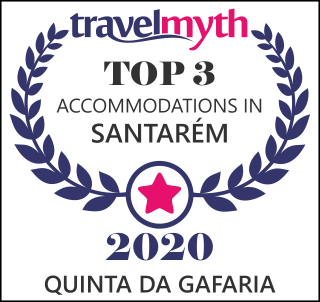 hotels in Santarém