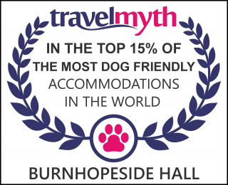 best dog friendly hotels in Lanchester
