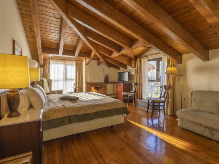 Domotel Anemolia Mountain Resort