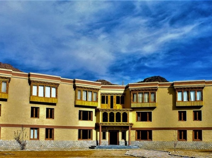 The Verda Driftwood Ladakh