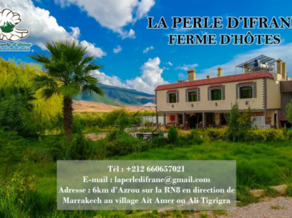 hotels for honeymoon in ifrane travelmyth