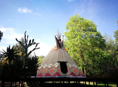 Magical Teepee Experience in Hogsback!