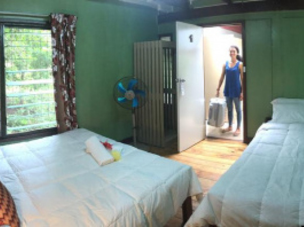 Treetops Boutique Hotel & Bungalows